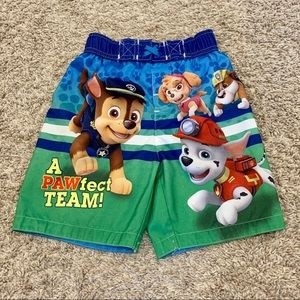 Toddler Boys Paw Patrol Swim Trunks